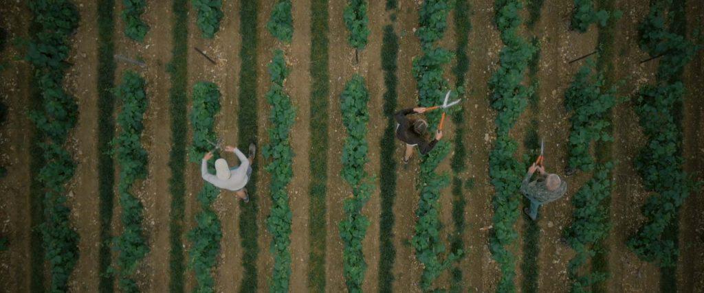 Film sur le vignoble de Montgueux