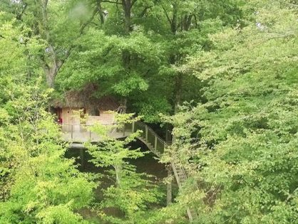 Diffusion de l'émission PCPL forêt d'Orient sur France 3