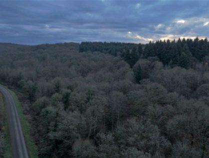 Tournage en forêt du Pays d'Othe