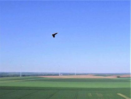 Une aile volante filmée par drone
