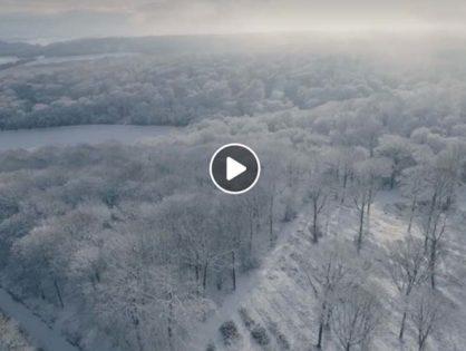 La neige s'invite dans l'Aube...